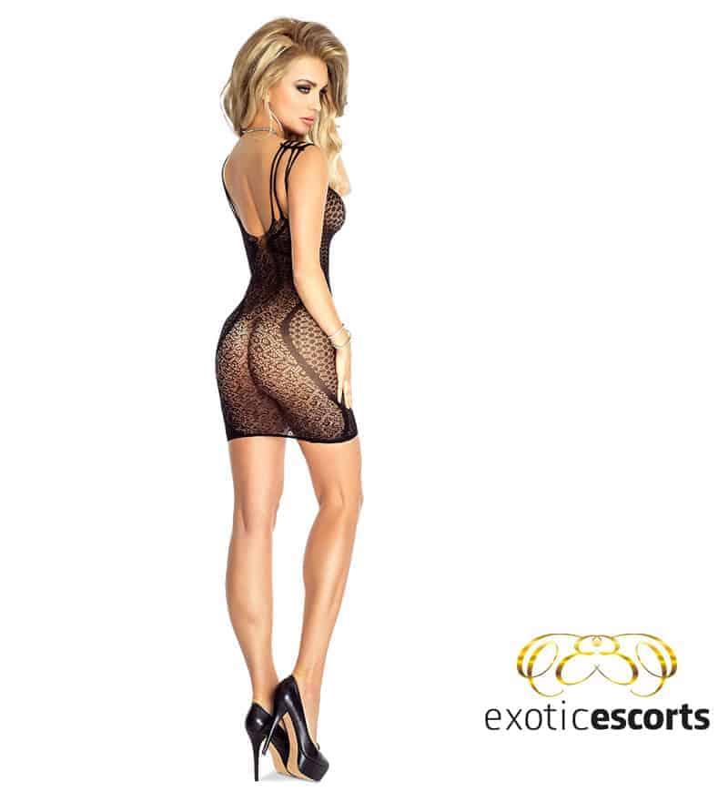Netzkleid-2_schwarz_2---Exotic-Escorts